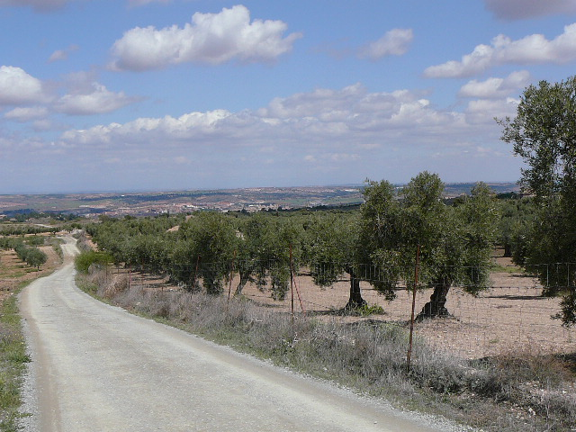 Toledo En direction de Las Nieves